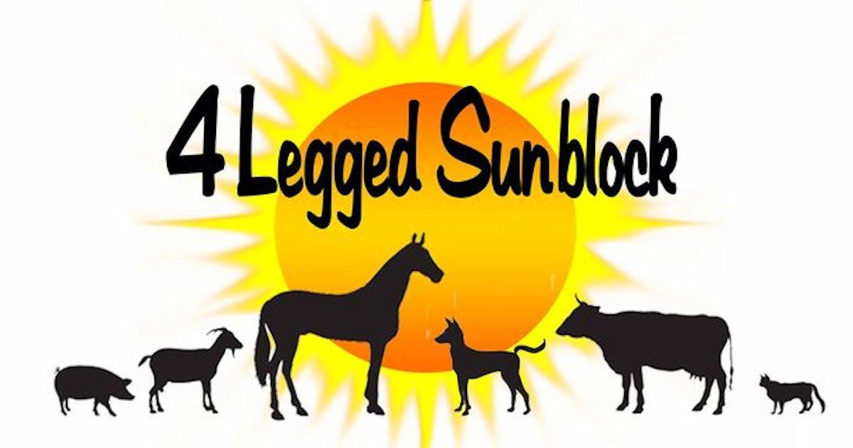 Free Sample of 4 Legged Sunblock